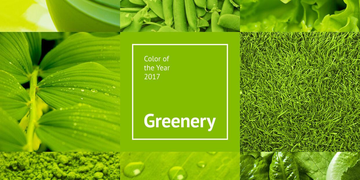 farbe des jahres 2017 greenery media concept schweiz. Black Bedroom Furniture Sets. Home Design Ideas